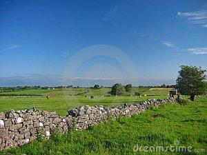 irish-countryside-summer-538789